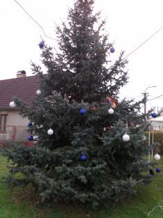 Vánoční strom 2019